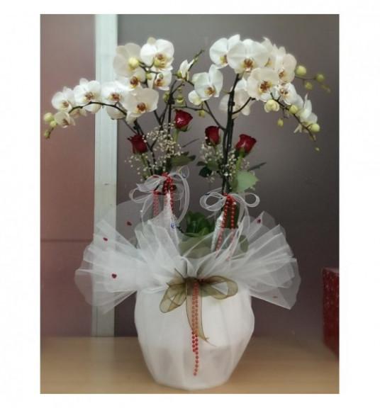 4 Dal Orkide ve 4 Adet Gül C-OR144