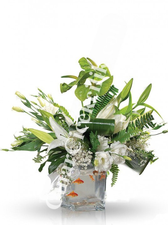 Beyaz Balıklı Çiçek Aranjmanı