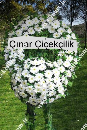 Beyaz Jerbera Lilyum Cenaze Çelengi