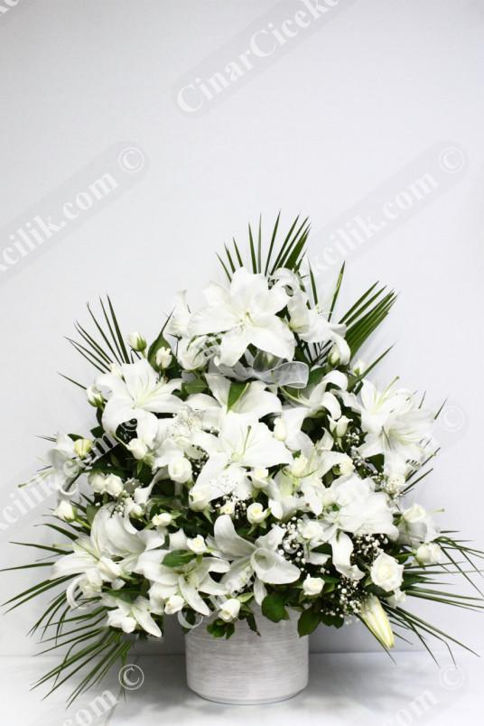 Su Damlası Beyaz Gül Lilyum  C-AR116