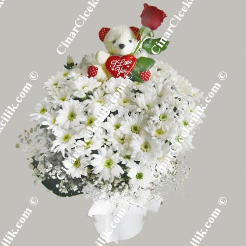 Oyuncaklı Ayı Kır Çiçekleri C-OY126