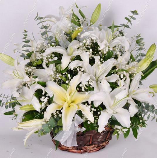Sade Beyaz Çiçek Sepeti Lilyum C-AR129