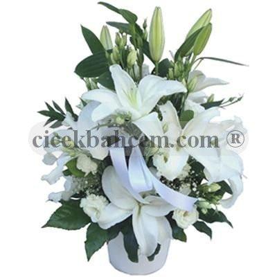 Beyaz Melek Lilyum Gül
