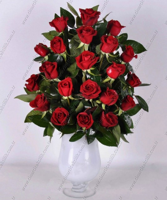 Aşkın Dansı 21 Kırmızı Gül C-CAM136