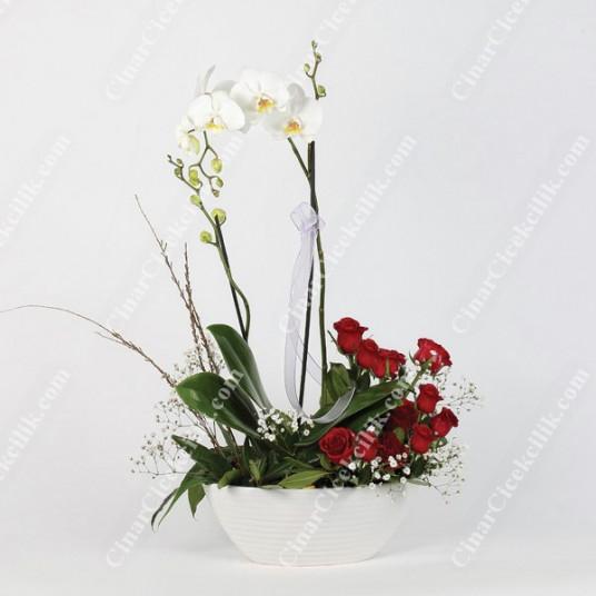 Aşkın Tarifi 2li Orkide Kırmızı Gül C-AR109