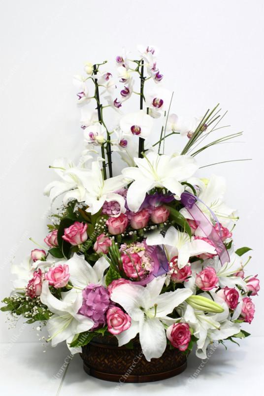 En Değerli Orkide Pembe Gül Lilyum C-AR139