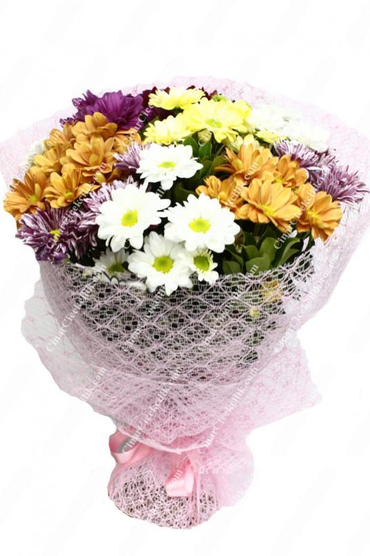 Bahar Sevinci Papatya Kır Çiçeği C-BUK163