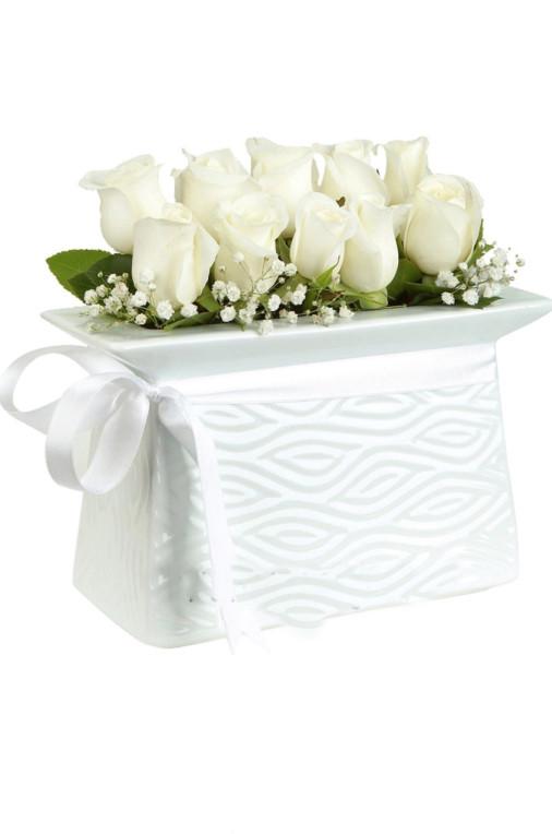 Aşk ve Romantizm Beyaz Gül C-SER110