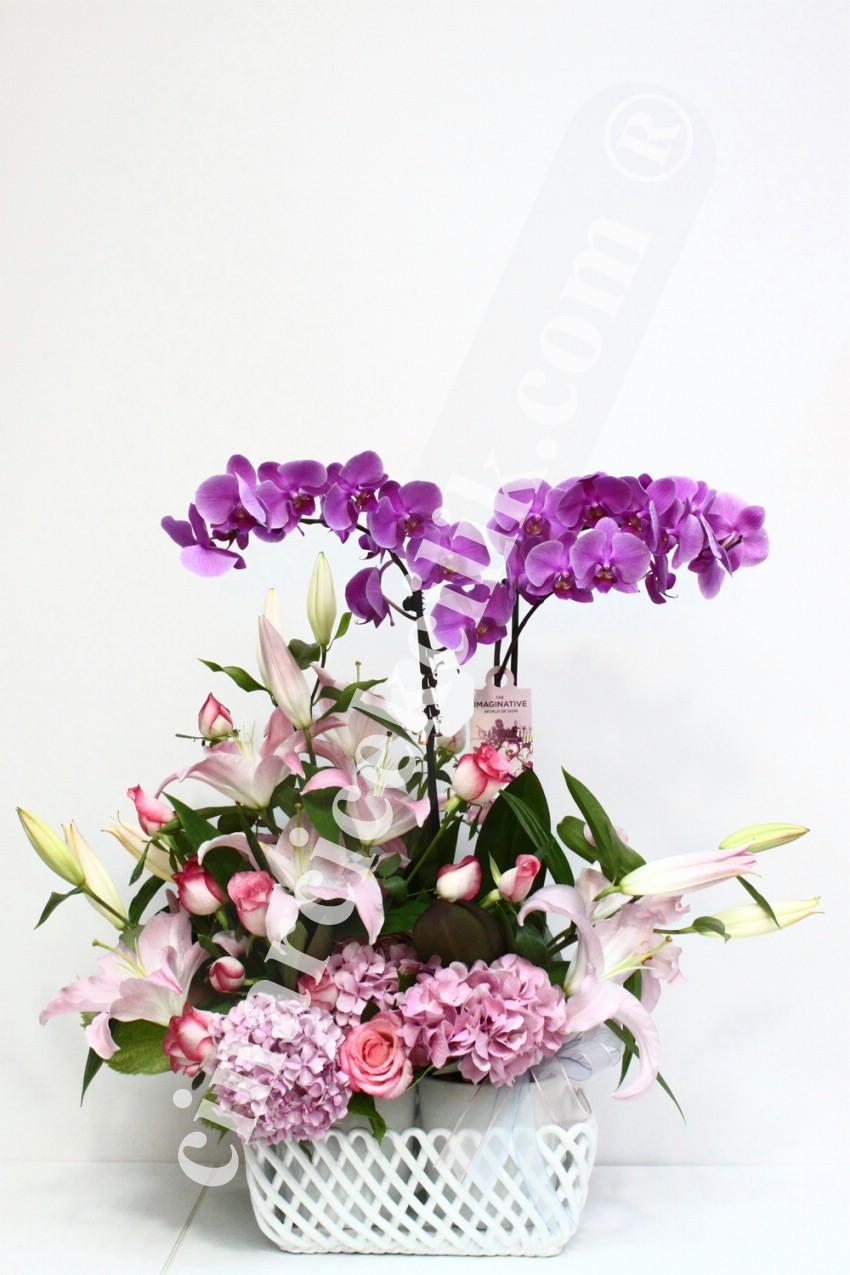 Dörtlü Pembe Orkide Gül Lilyum C-OR139