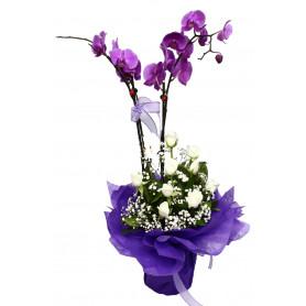 İkili Pembe Orkide Beyaz Gül C-OR132