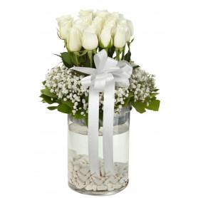 Büyüleyici Beyaz Güller C-CAM116
