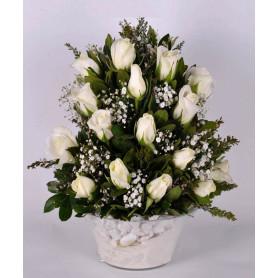 Aşkın Asaleti 15 Beyaz Gül C-CAM135