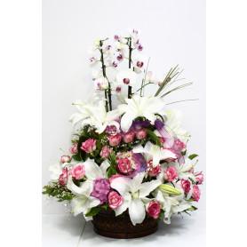 En Değerli Orkide Pembe Gül Lilyum